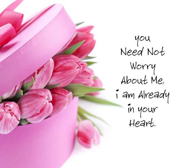 Best Cute Love Quotes That Express Exactly From the Heart,