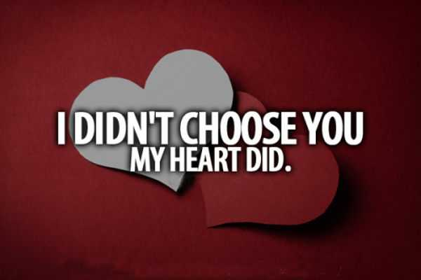 Love quotes life Sayings My Heart Did funny quotes about love and relationships