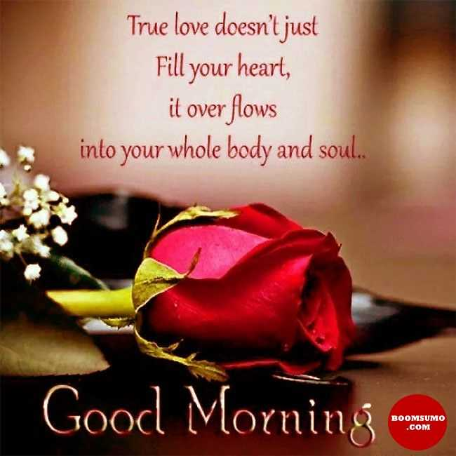 Good Morning Quotes Love Sayings True love doesn ' just Fill your heart