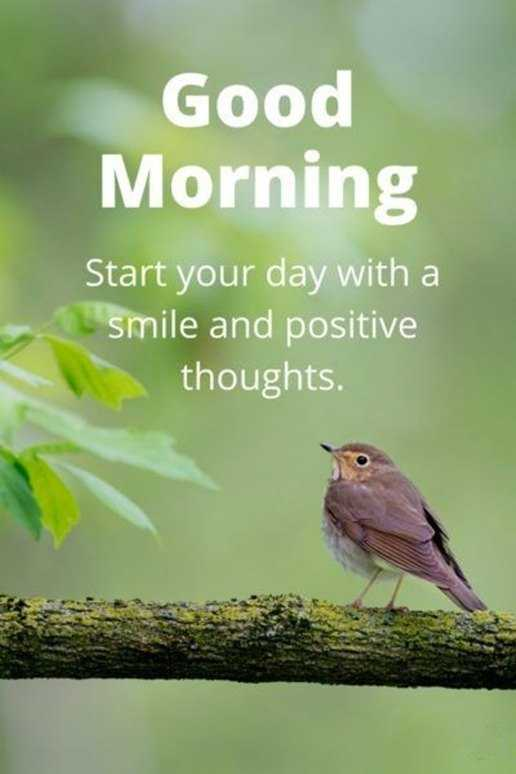 Good Morning Universe Quotes : Good morning quotes start your day smile and