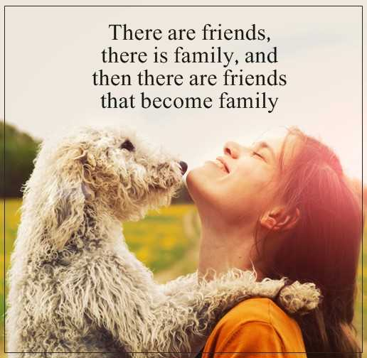Short friends quotes Friends That Become Family, When They Are