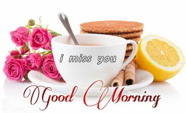 Good Morning Quotes Why Is Everyone Talking About I Miss You
