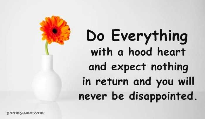 Inspirational Life Quotes How Will Never Be Disappointed
