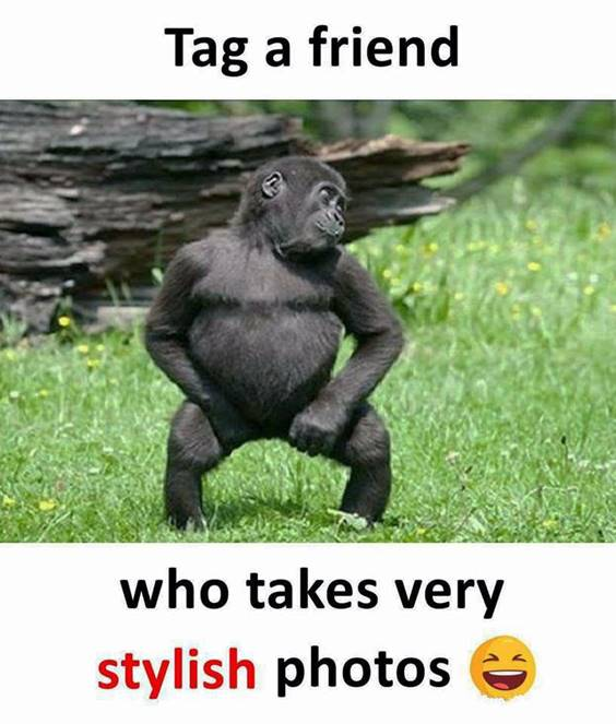 Friendship Day Funny Quotes About Crazy Friends