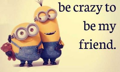 Funny Friendship Quotes - You dont have to be crazy