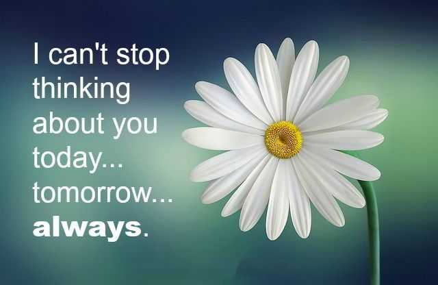 I Thinking about You - Always Love Quotes