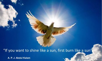 If you want to shine like a sun - Motivational Quotes