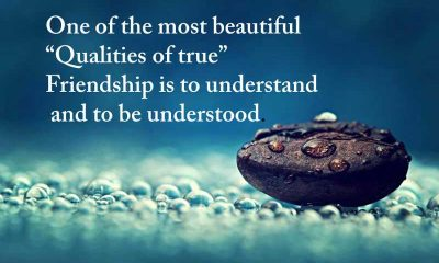 Qualities of true friendship - Best Friends Quotes