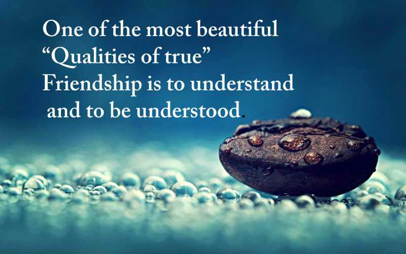 Qualities of true friendship - Best Friends Quotes