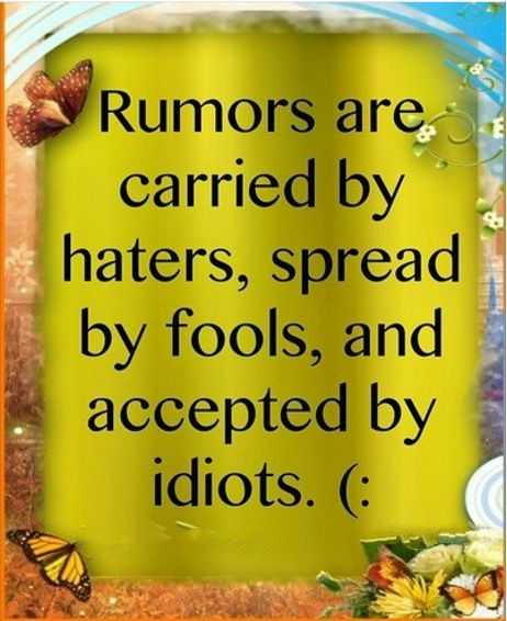 Rumors are carried by haters, accepted by idiots - hates Quotes