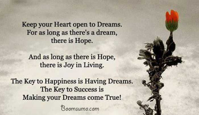 dreams quotes about achieving success ' Dreams Come True quotes life