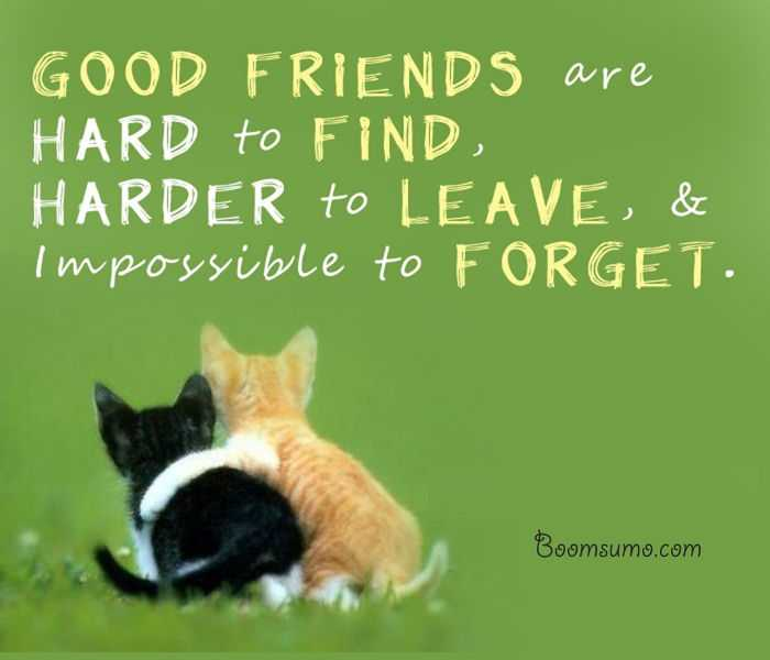 friendship quotes and sayings ' Impossible to Forget My Friend, inspiring friendship quotes