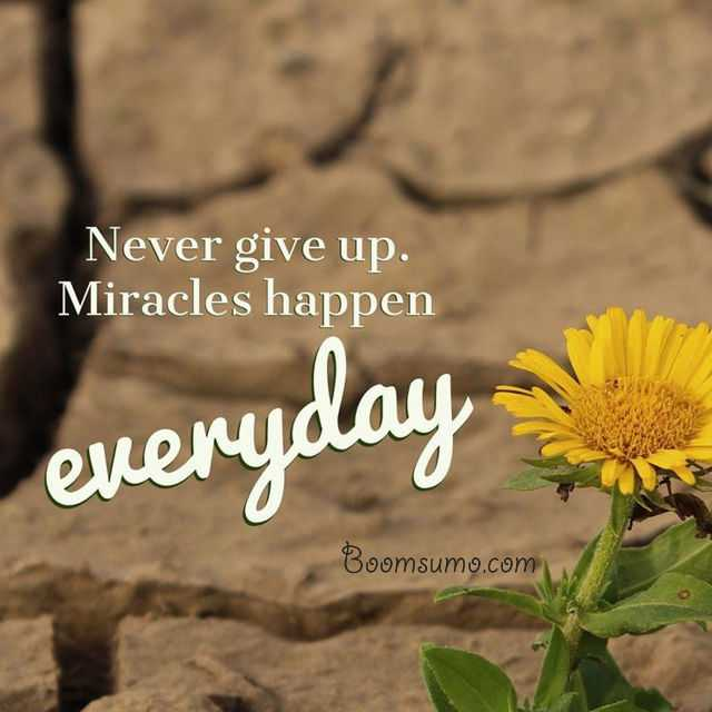 short quotes about life Miracles happen everyday cool quotes about life