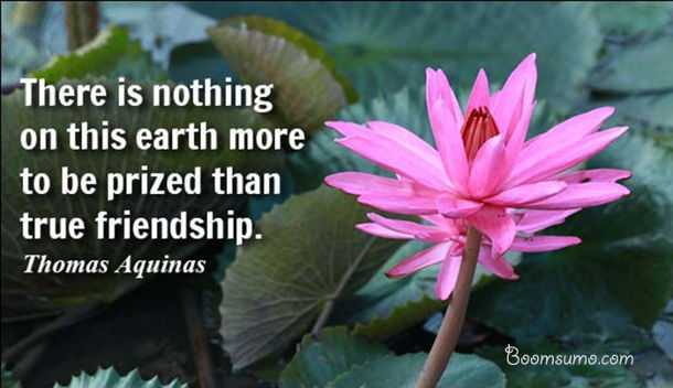 true friendship quotes about life Nothing imporant than true friendship in earth friends quotes
