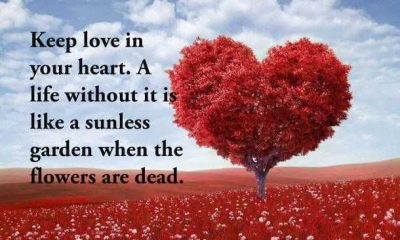 Love Quotes Keep love in your heart love life quotes