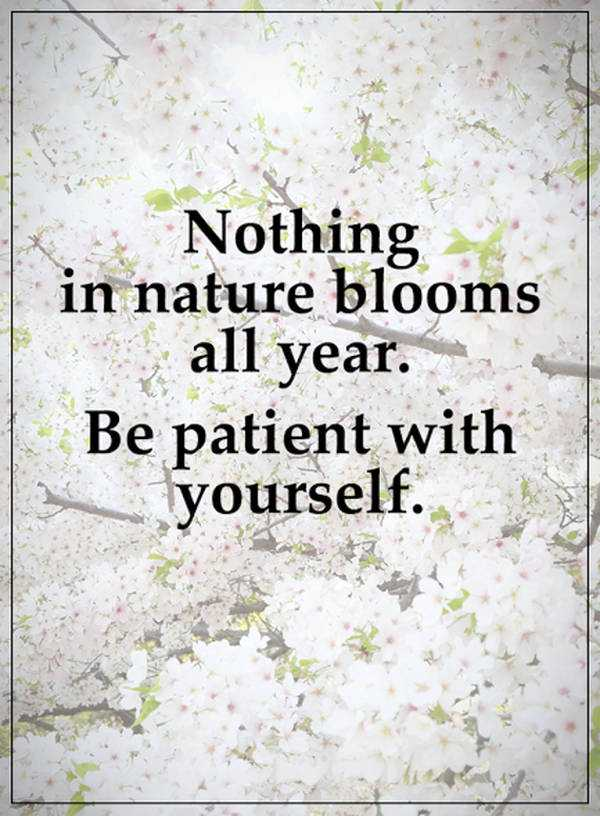 inspirational thoughts be patients