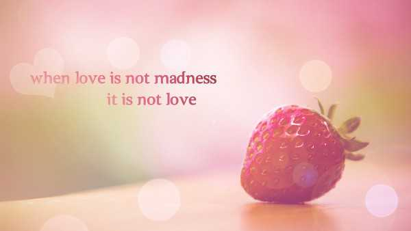 Love quotes about love how to love quotes When love is Not madness Love quotes for him