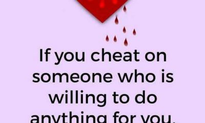 happiness quotes You Cheated Yourself quotes about happiness and love