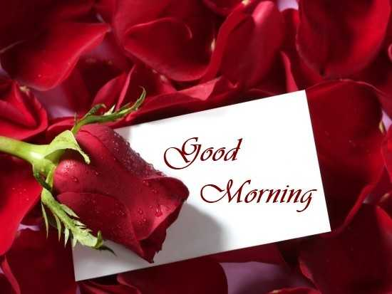 Good Morning Quotes Love Sayings True Love Not Fill Heart