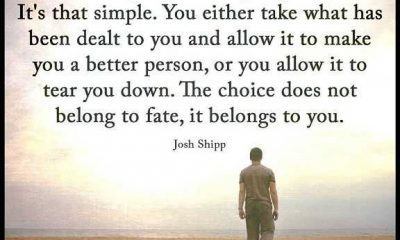 Inspirational Life Quotes The Choice Not Belong To Fate, It Belongs To You