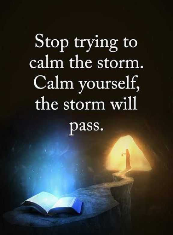 Inspirational Life Quotes Words of Wisdom Calm Yourself, the Storm Will Pass