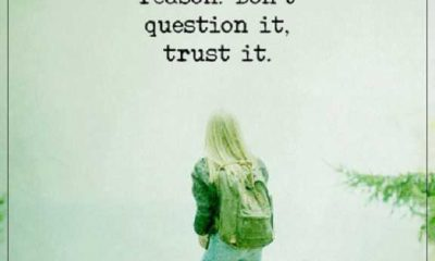 Inspirational life quotes About Life Don't Question It, Trust It