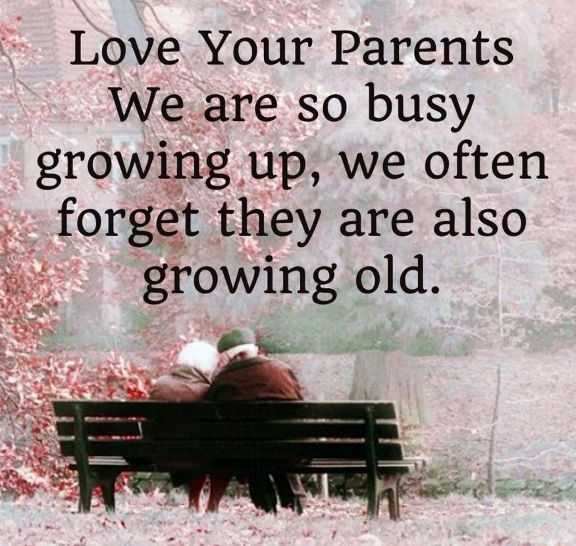 Parents Day Quotes About Love Your Parents Growing Old Good