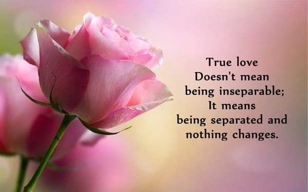 Awesome Quotes Why True Love Doesnt Being Inseparable