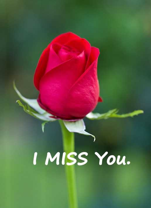 Best love Quotes Love Sayings I Miss You Remember Me