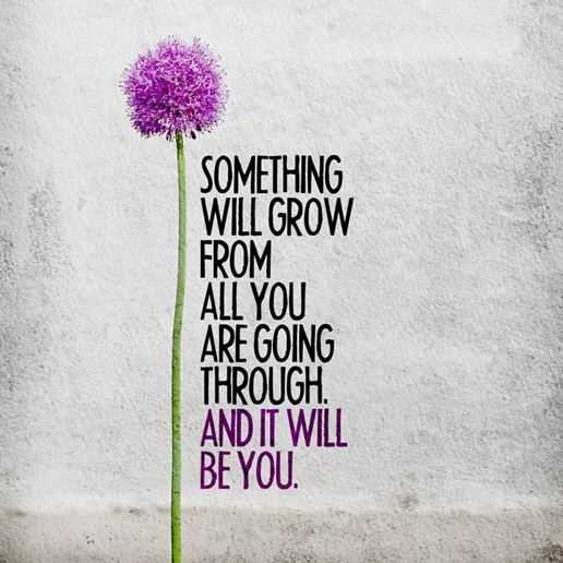 Encourage words of Encouragement Something Will Grow, Going Through