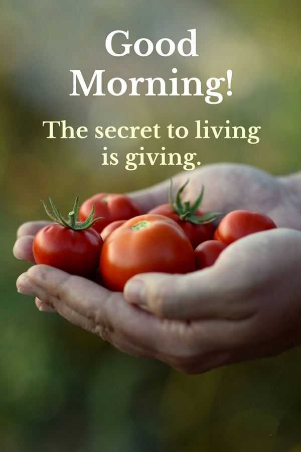 Good Morning Quotes Good Morning Living is Giving, The Secret of life