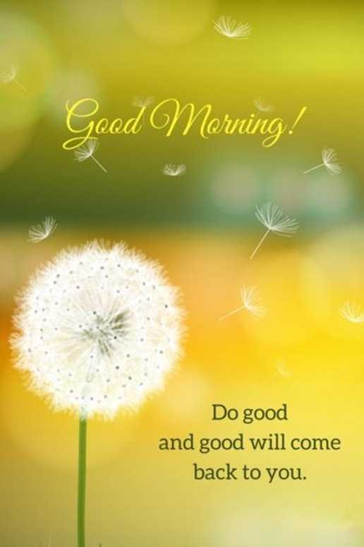 Good Morning Quotes: Life sayings Good Morning Do Good and