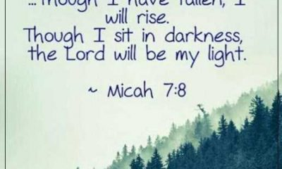 If I Have Fallen I Will Rise Bible Inspirational Quotes