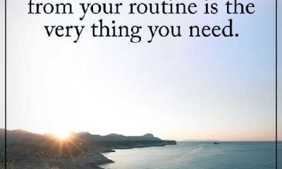 Positive Quotes about life Why You Need Sometimes Breaks Your Routine