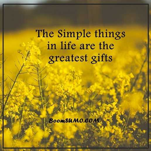 Simple Quotes About Life Prepossessing Positive Life Quotes Life Sayings Simple Life Things Are Greatest