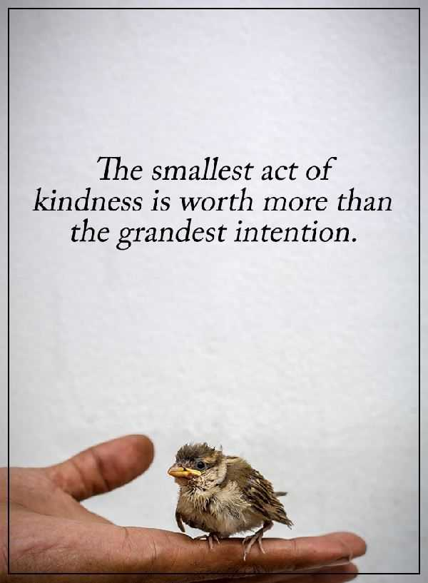 kindness quotes Why Kindness Worth more than Grandest Intention