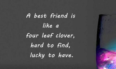 Best Friendship Quotes Hard To Find How To Be Keep