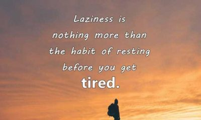 Funny Quotes How To Laziness, The Habit Of Resting