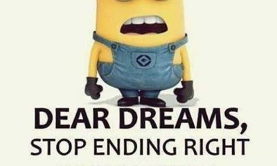 Funny Quotes I've Ever Seen Dear Dreams Stop Blow Your Mind