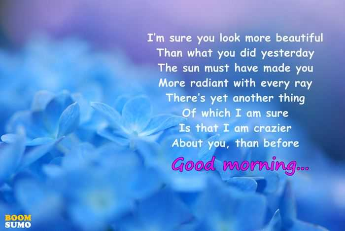 Good Morning Quotes Which I Am Sure I've Ever Seen In The World 1