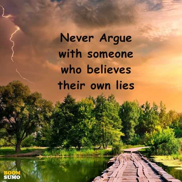 Inspirational Quotes Never Argue With Someone