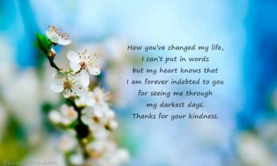 Kindness Quotes How You've Changed My Life My Heart Knows