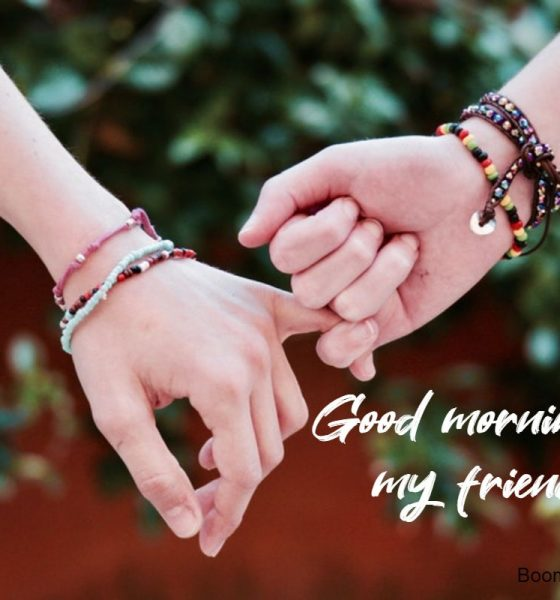 good morning quotes for friendship 2
