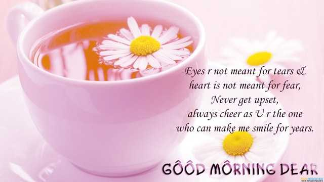 Good morning Quotes Eyes are not meant for tears