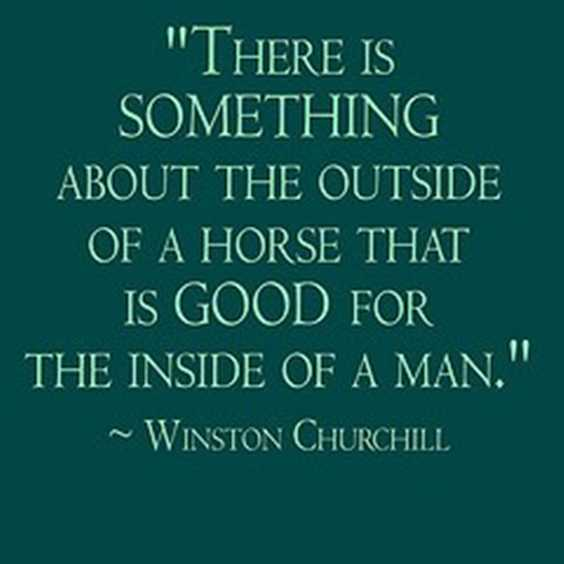 153 Winston Churchill Quotes Everyone Need to Read Courage 1
