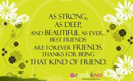 40 Friends Forever Quotes Best Birthday Wishes for Your Best Friend 16