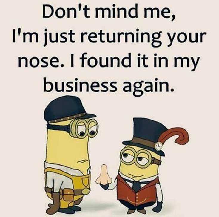 24 Funny Quotes Motivational That Will Inspire You — Minions Quotes 3