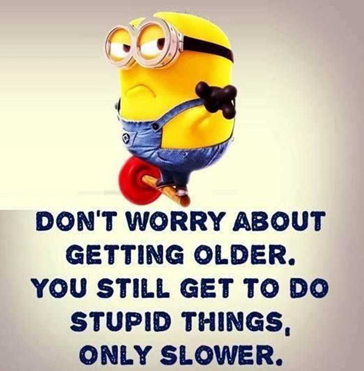 50 Best Funny Minion Quotes & Funny Quotes Life - BoomSumo ...