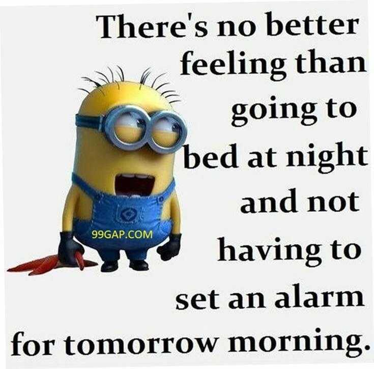 50 Best Funny Minion Quotes Funny Quotes Life 16