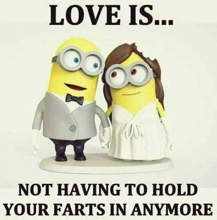 50 Best Funny Minion Quotes Funny Quotes Life 19